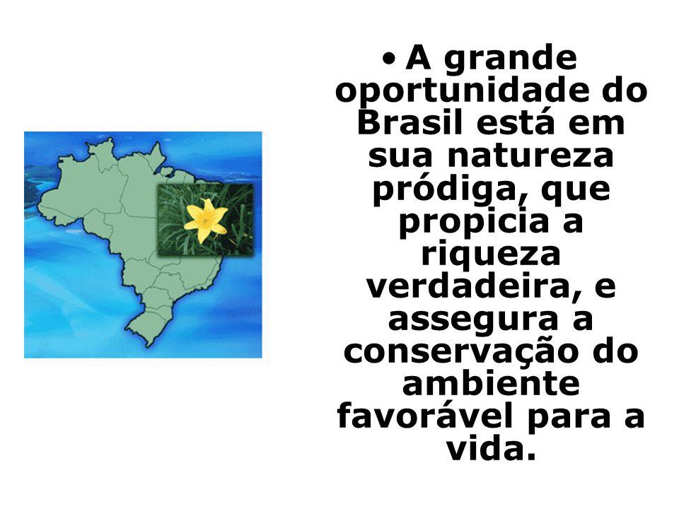 A grande oportunidade do Brasil está em sua natureza pródiga, que propicia a riqueza verdadeira, e assegura a conservação do ambiente favorável para a