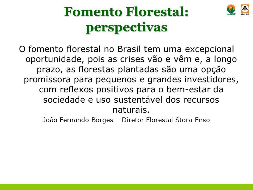Fomento Florestal: perspectivas O fomento florestal no Brasil tem uma excepcional oportunidade, pois as crises vão e vêm e, a longo prazo, as floresta