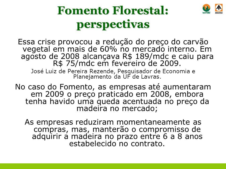 Fomento Florestal: perspectivas Essa crise provocou a redução do preço do carvão vegetal em mais de 60% no mercado interno. Em agosto de 2008 alcançav