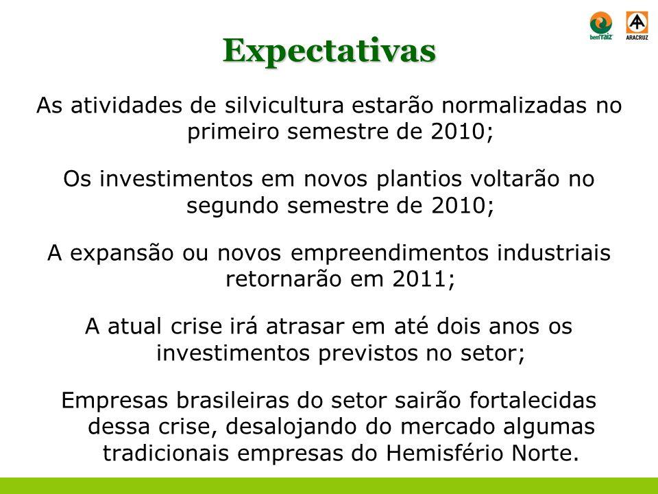 Expectativas As atividades de silvicultura estarão normalizadas no primeiro semestre de 2010; Os investimentos em novos plantios voltarão no segundo s