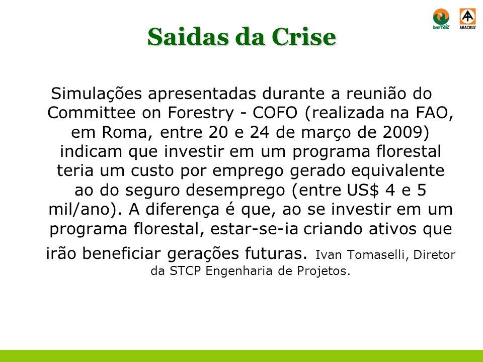 Saidas da Crise Simulações apresentadas durante a reunião do Committee on Forestry - COFO (realizada na FAO, em Roma, entre 20 e 24 de março de 2009)