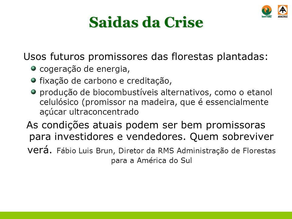 Saidas da Crise Usos futuros promissores das florestas plantadas: cogeração de energia, fixação de carbono e creditação, produção de biocombustíveis a