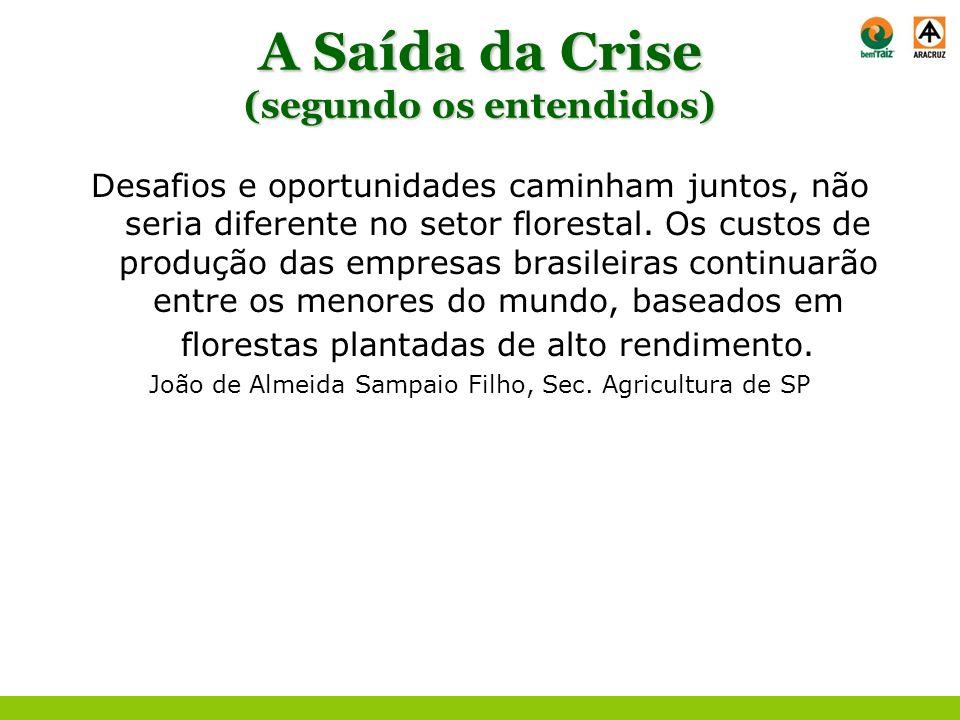 A Saída da Crise (segundo os entendidos) A competitividade do setor brasileiro continuará a oferecer boas perspectivas no cenário mundial, mesmo em novos de negócios, como o mercado de carbono e bio-refinarias.