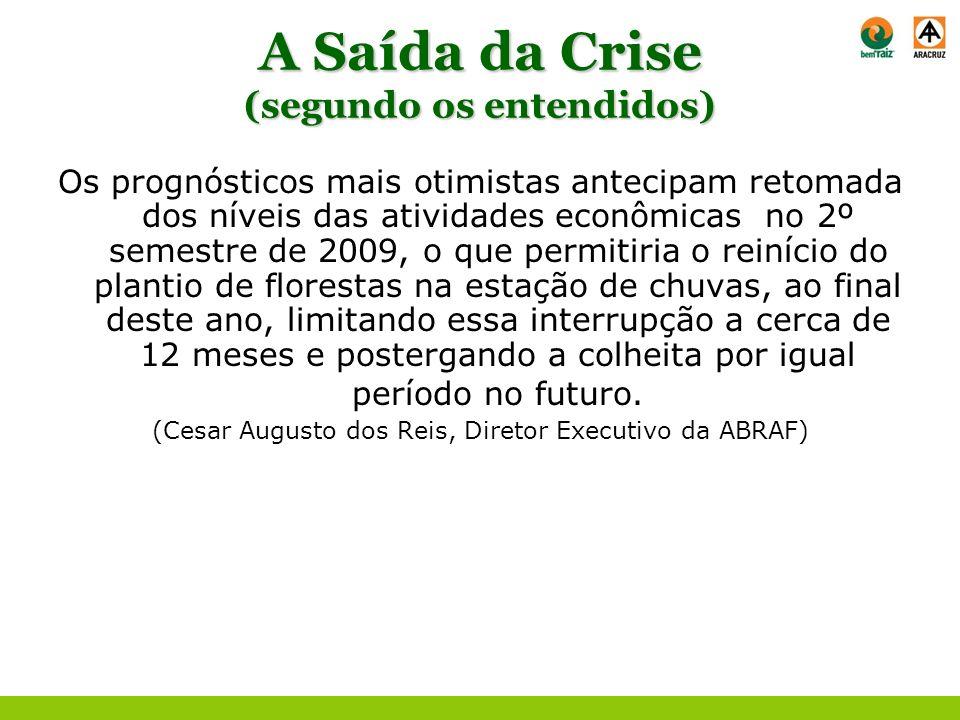 A Saída da Crise (segundo os entendidos) Os prognósticos mais otimistas antecipam retomada dos níveis das atividades econômicas no 2º semestre de 2009