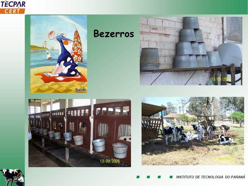 INSTITUTO DE TECNOLOGIA DO PARANÁ Bezerros