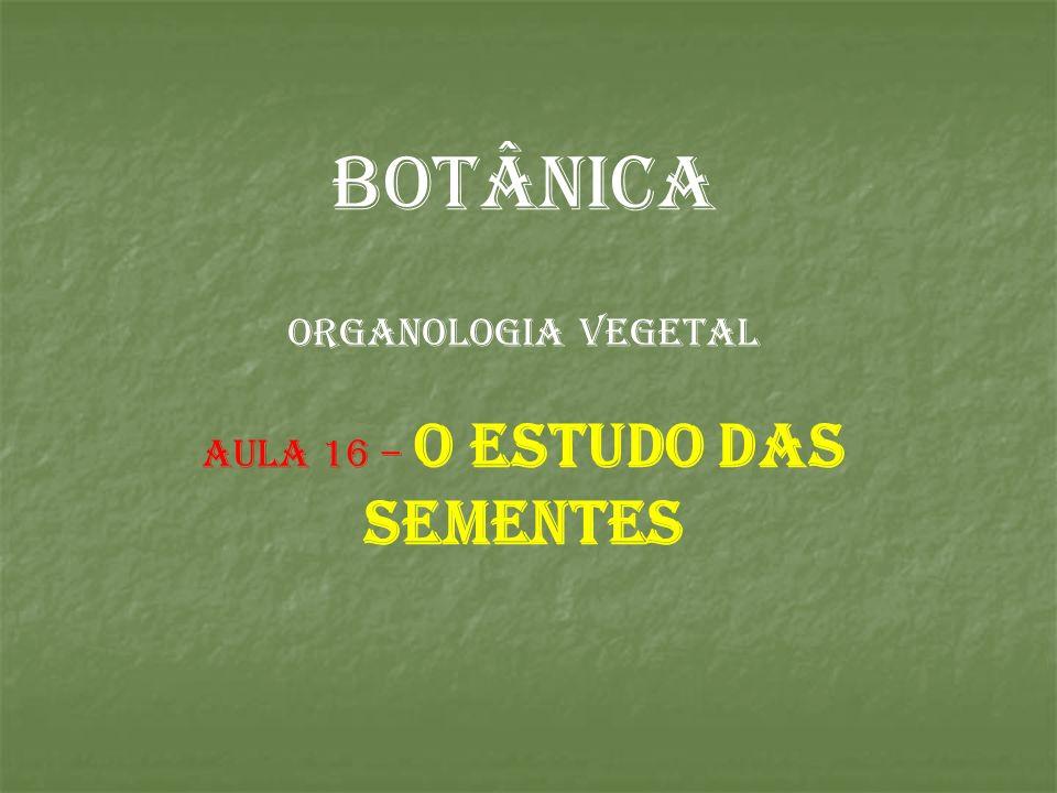 BOTÂNICA ORGANOLOGIA VEGETAL AULA 16 – o estudo das sementes