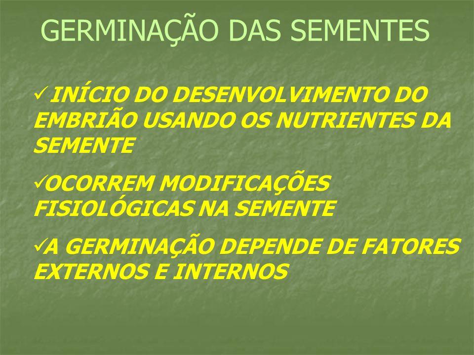 INÍCIO DO DESENVOLVIMENTO DO EMBRIÃO USANDO OS NUTRIENTES DA SEMENTE OCORREM MODIFICAÇÕES FISIOLÓGICAS NA SEMENTE A GERMINAÇÃO DEPENDE DE FATORES EXTE