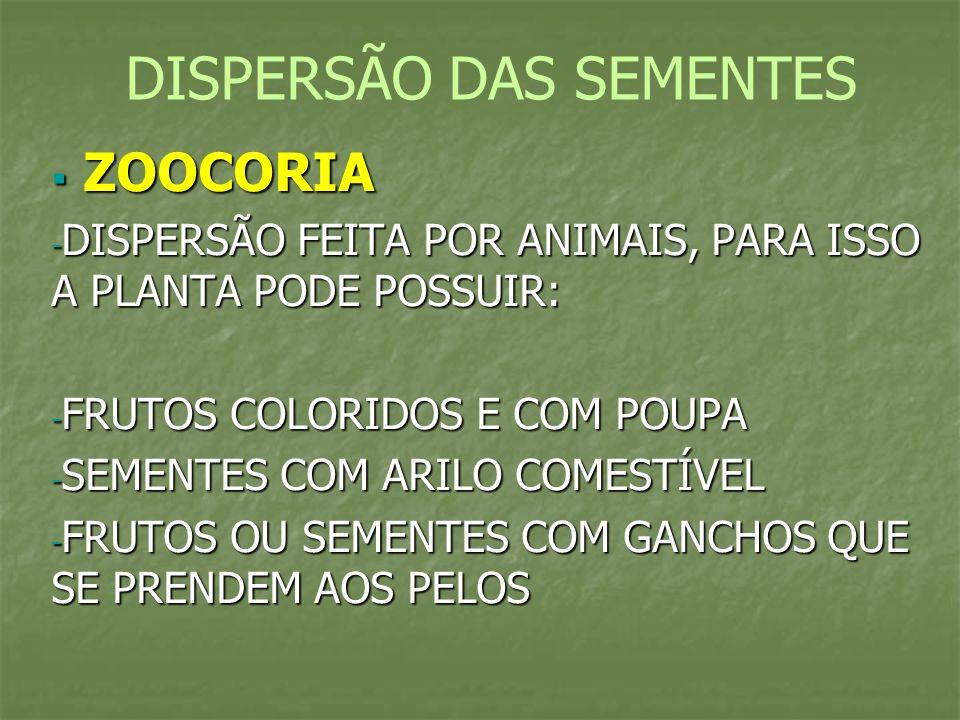 ZOOCORIA ZOOCORIA - DISPERSÃO FEITA POR ANIMAIS, PARA ISSO A PLANTA PODE POSSUIR: - FRUTOS COLORIDOS E COM POUPA - SEMENTES COM ARILO COMESTÍVEL - FRU