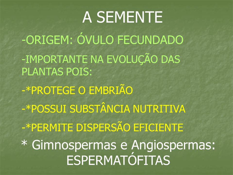 A SEMENTE -ORIGEM: ÓVULO FECUNDADO -IMPORTANTE NA EVOLUÇÃO DAS PLANTAS POIS: -*PROTEGE O EMBRIÃO -*POSSUI SUBSTÂNCIA NUTRITIVA -*PERMITE DISPERSÃO EFI