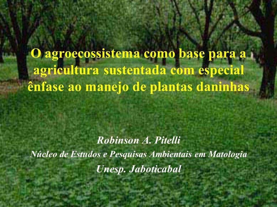 O agroecossistema como base para a agricultura sustentada com especial ênfase ao manejo de plantas daninhas Robinson A. Pitelli Núcleo de Estudos e Pe