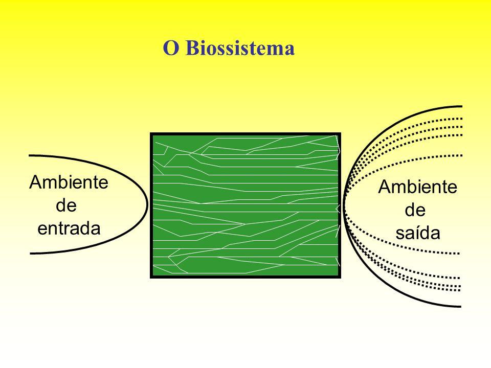 O Biossistema Ambiente de entrada Ambiente de saída