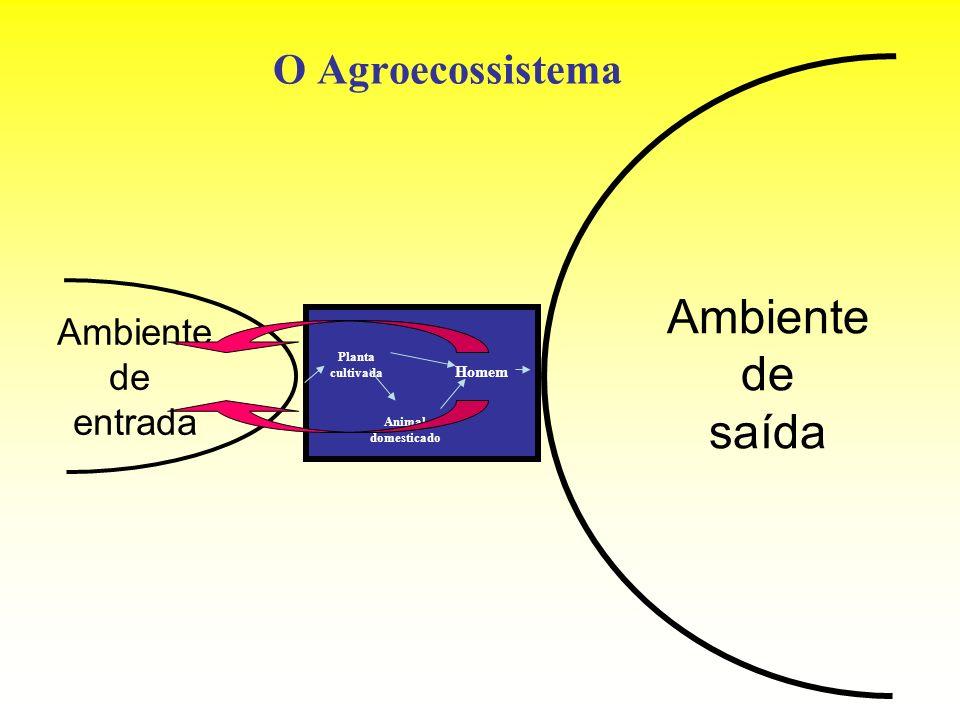O Agroecossistema Ambiente de entrada Ambiente de saída Planta cultivada Animal domesticado Homem