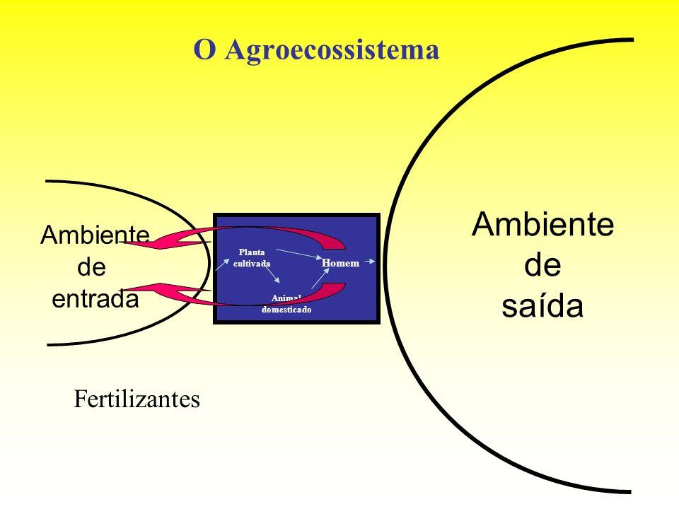 O Agroecossistema Ambiente de entrada Ambiente de saída Planta cultivada Animal domesticado Homem Fertilizantes