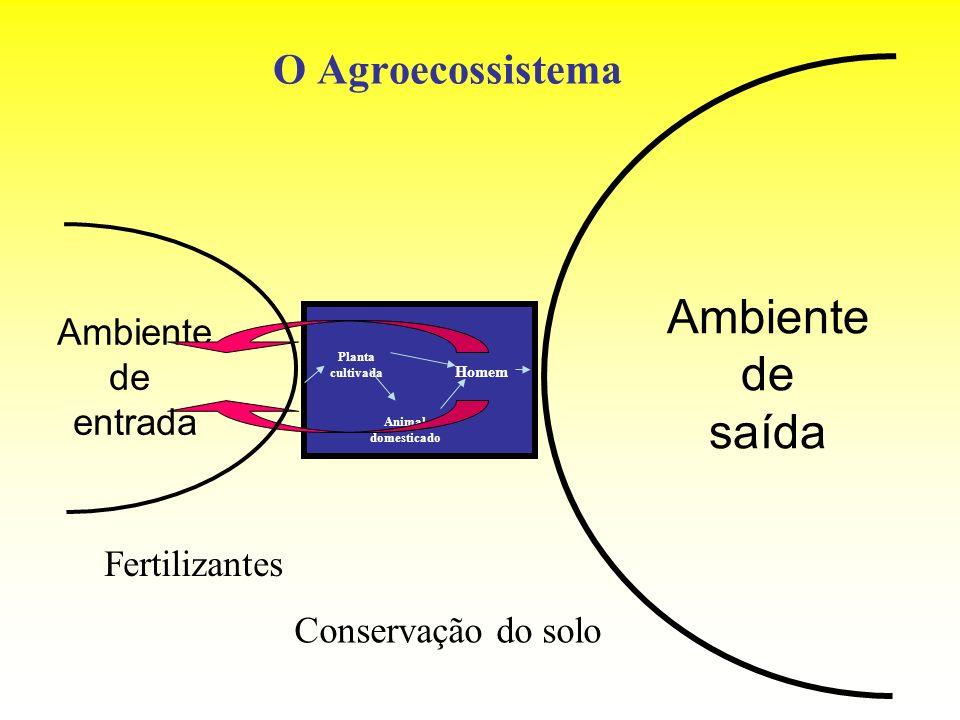 O Agroecossistema Ambiente de entrada Ambiente de saída Planta cultivada Animal domesticado Homem Fertilizantes Conservação do solo