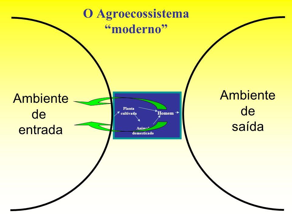 O Agroecossistema moderno Ambiente de entrada Ambiente de saída Planta cultivada Animal domesticado Homem