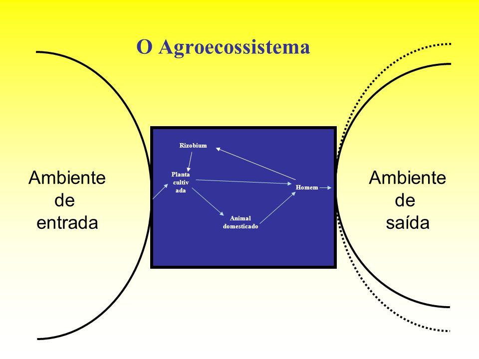 O Agroecossistema Ambiente de entrada Ambiente de saída Planta cultiv ada Animal domesticado Homem Rizobium