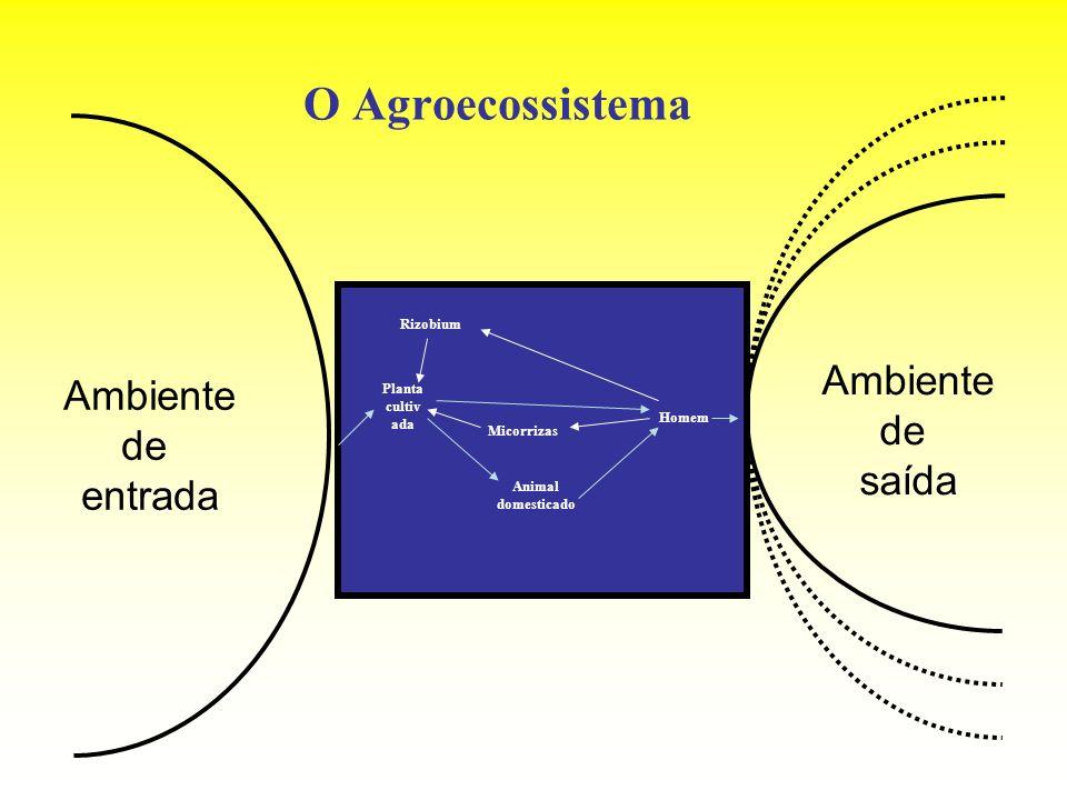 O Agroecossistema Ambiente de entrada Planta cultiv ada Animal domesticado Homem Rizobium Micorrizas Ambiente de saída