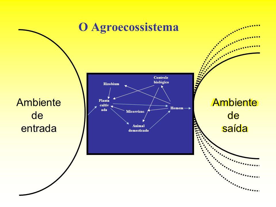 O Agroecossistema Ambiente de entrada Ambiente de saída Planta cultiv ada Animal domesticado Homem Rizobium Micorrizas Controle biológico Ambiente de