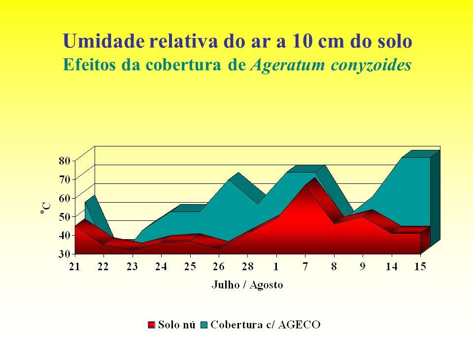 Umidade relativa do ar a 10 cm do solo Efeitos da cobertura de Ageratum conyzoides