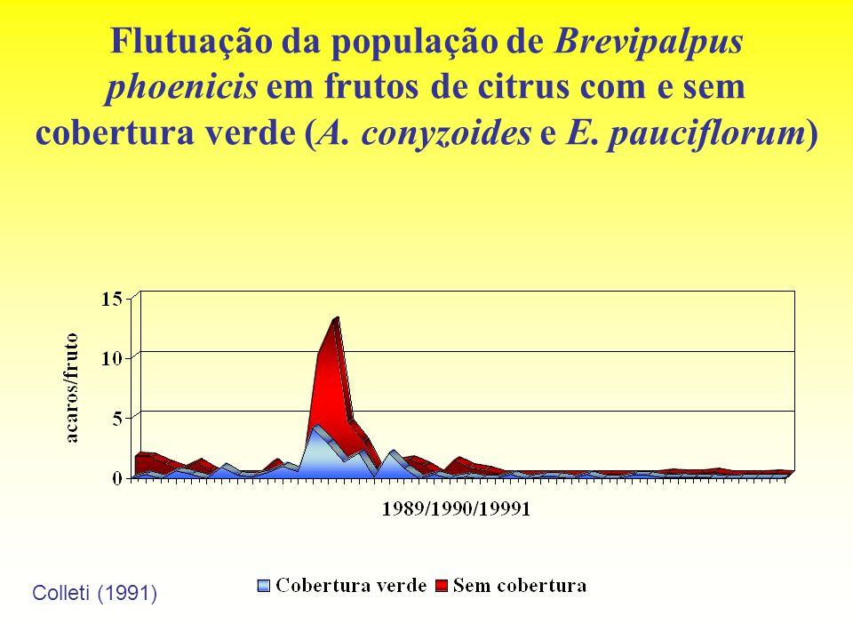 Flutuação da população de Brevipalpus phoenicis em frutos de citrus com e sem cobertura verde (A. conyzoides e E. pauciflorum) Colleti (1991)