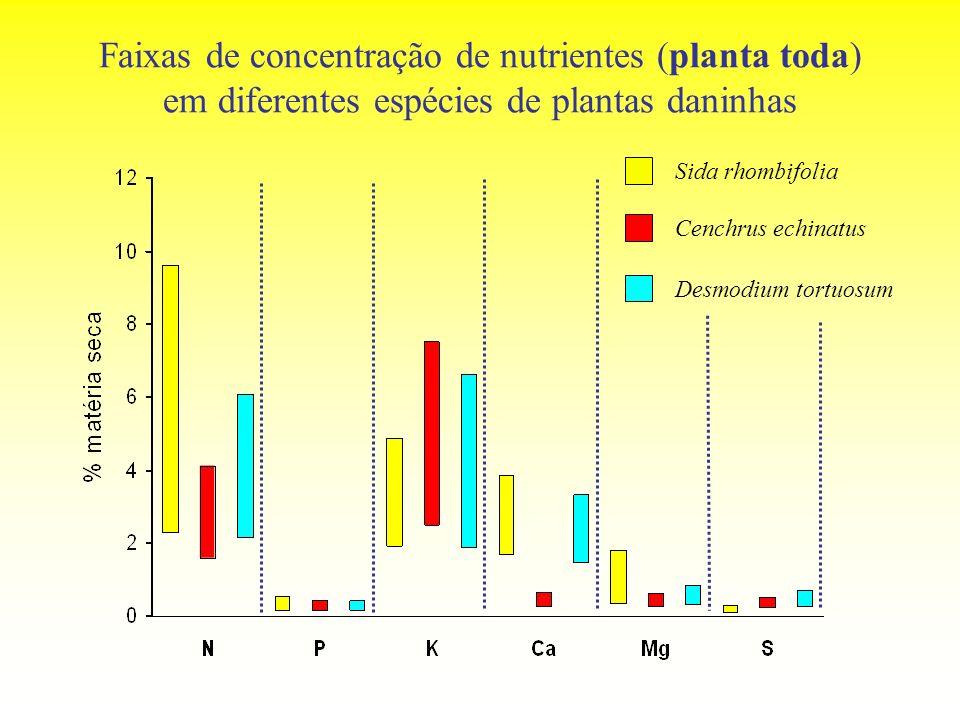 Faixas de concentração de nutrientes (planta toda) em diferentes espécies de plantas daninhas Sida rhombifolia Cenchrus echinatus Desmodium tortuosum