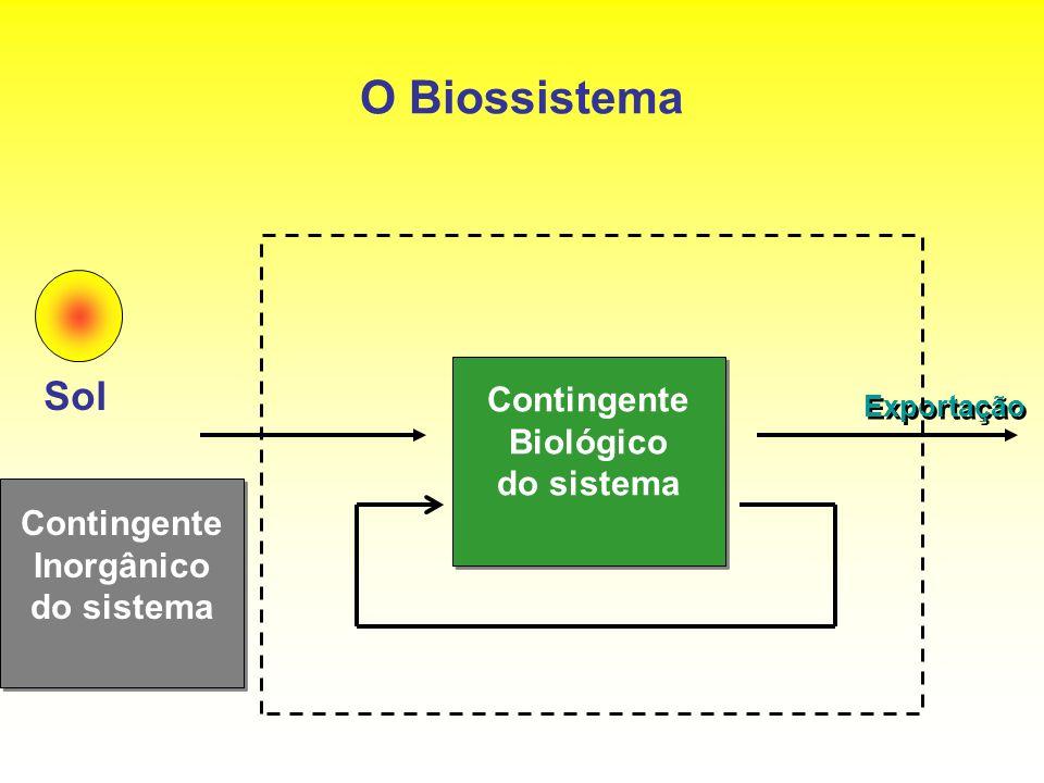 O Biossistema Contingente Biológico do sistema Contingente Biológico do sistema Sol Exportação Contingente Inorgânico do sistema Contingente Inorgânic