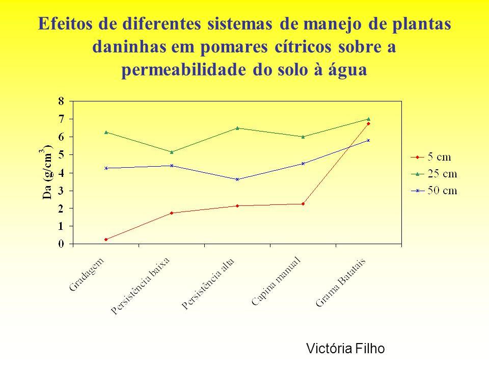 Efeitos de diferentes sistemas de manejo de plantas daninhas em pomares cítricos sobre a permeabilidade do solo à água Victória Filho