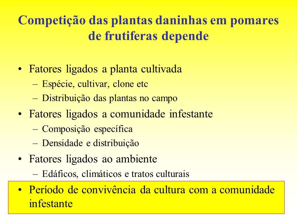 Competição das plantas daninhas em pomares de frutiferas depende Fatores ligados a planta cultivada –Espécie, cultivar, clone etc –Distribuição das pl