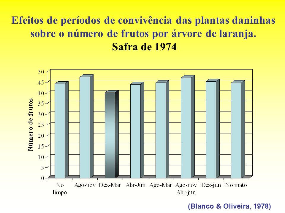 Efeitos de períodos de convivência das plantas daninhas sobre o número de frutos por árvore de laranja. Safra de 1974 (Blanco & Oliveira, 1978)