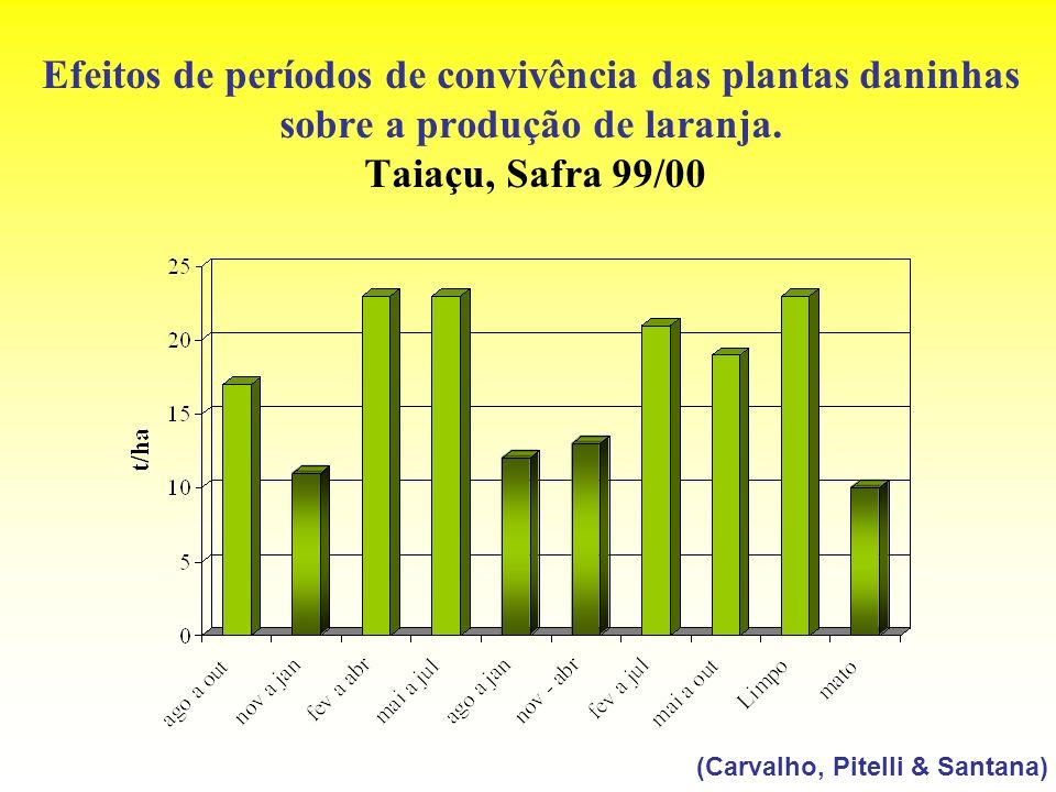 Efeitos de períodos de convivência das plantas daninhas sobre a produção de laranja. Taiaçu, Safra 99/00 (Carvalho, Pitelli & Santana)