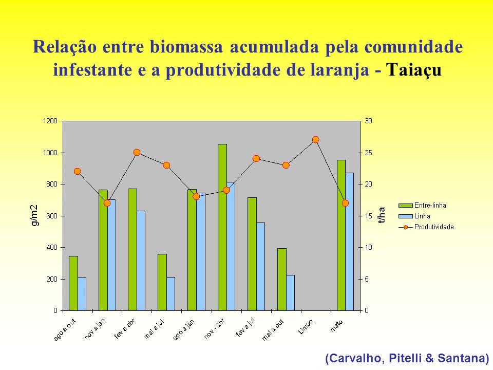 Relação entre biomassa acumulada pela comunidade infestante e a produtividade de laranja - Taiaçu (Carvalho, Pitelli & Santana)