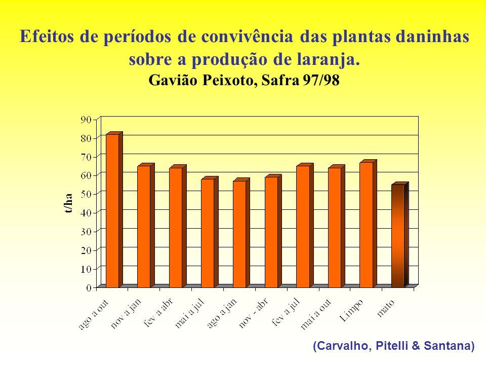 Efeitos de períodos de convivência das plantas daninhas sobre a produção de laranja. Gavião Peixoto, Safra 97/98 (Carvalho, Pitelli & Santana)