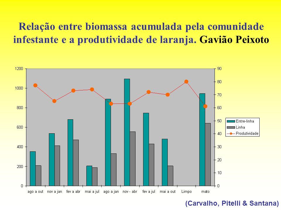 Relação entre biomassa acumulada pela comunidade infestante e a produtividade de laranja. Gavião Peixoto (Carvalho, Pitelli & Santana)