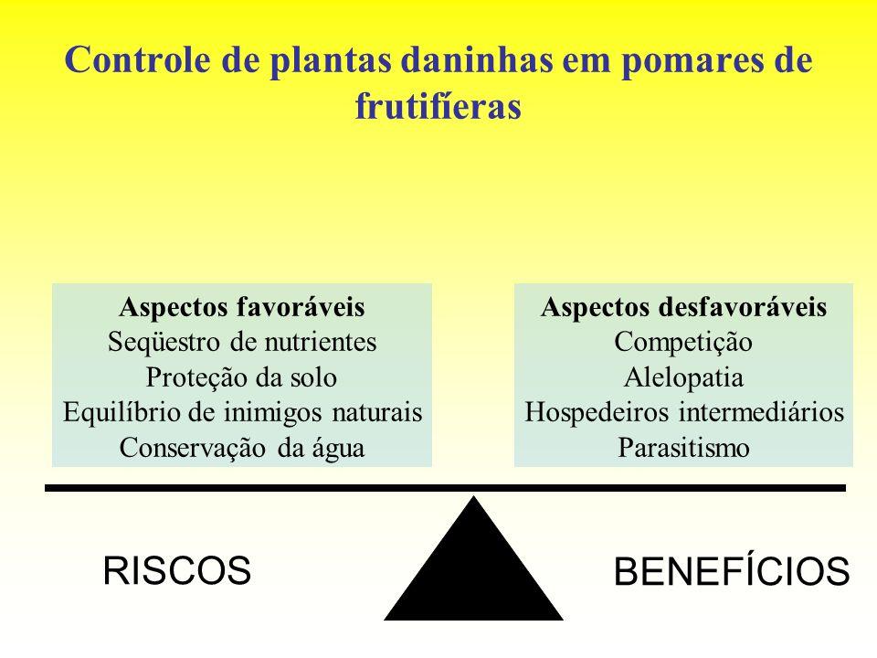 Controle de plantas daninhas em pomares de frutifíeras Aspectos favoráveis Seqüestro de nutrientes Proteção da solo Equilíbrio de inimigos naturais Co