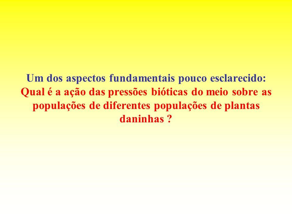 Um dos aspectos fundamentais pouco esclarecido: Qual é a ação das pressões bióticas do meio sobre as populações de diferentes populações de plantas da