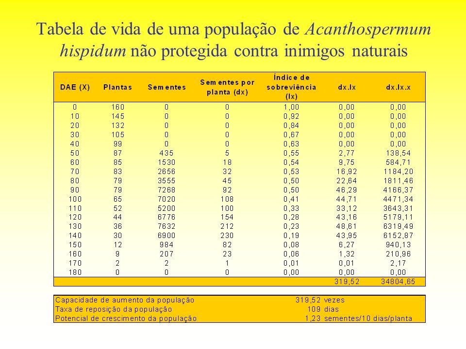 Tabela de vida de uma população de Acanthospermum hispidum não protegida contra inimigos naturais