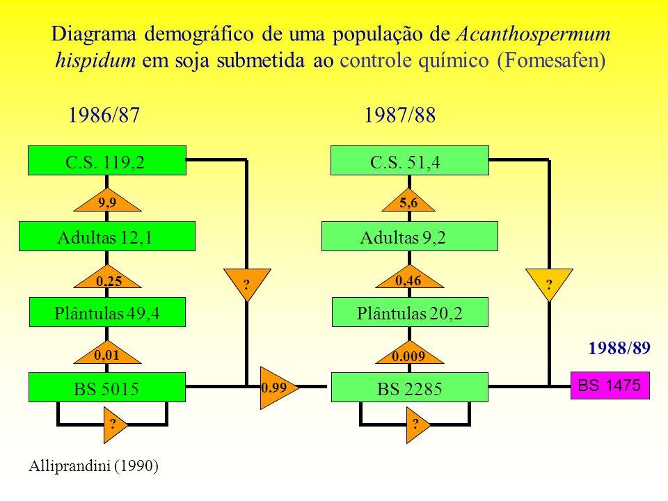 Diagrama demográfico de uma população de Acanthospermum hispidum em soja submetida ao controle químico (Fomesafen) BS 1475 1988/89 Alliprandini (1990)