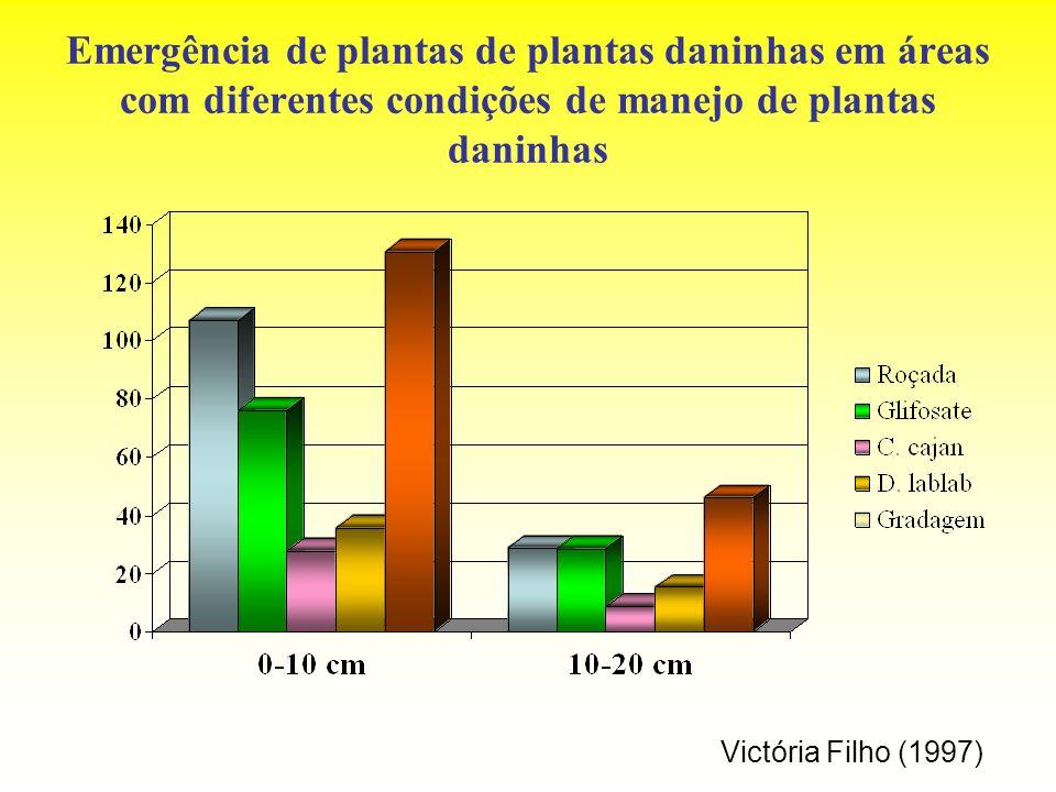 Emergência de plantas de plantas daninhas em áreas com diferentes condições de manejo de plantas daninhas Victória Filho (1997)