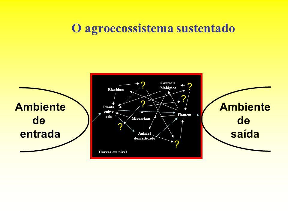 O agroecossistema sustentado Ambiente de entrada Ambiente de saída Planta cultiv ada Animal domesticado Homem Rizobium Micorrizas Controle biológico C