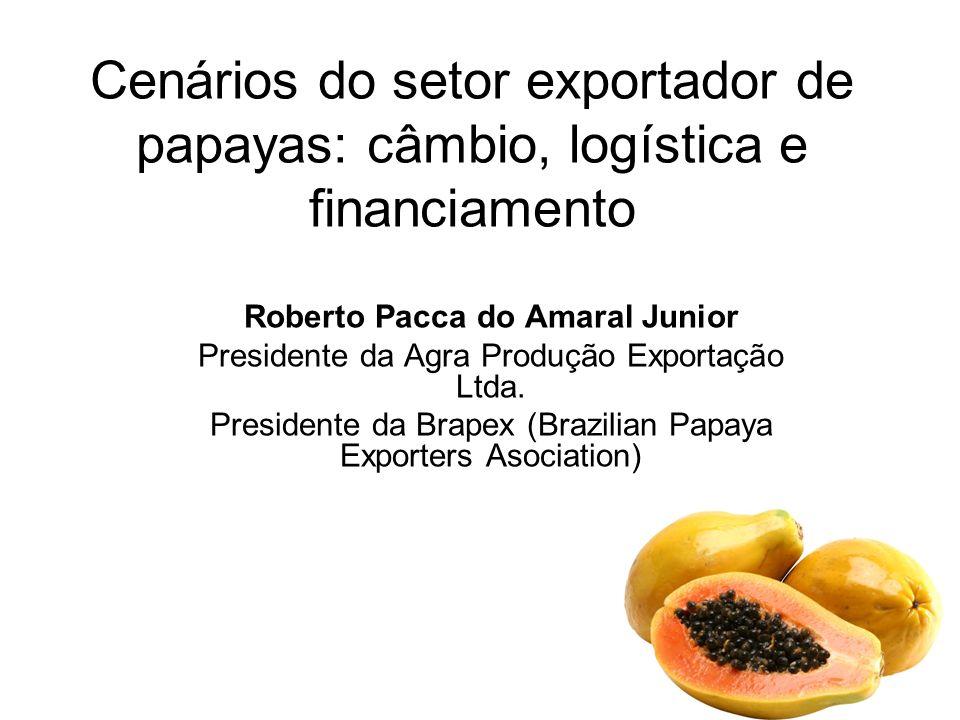 Cenários do setor exportador de papayas: câmbio, logística e financiamento Roberto Pacca do Amaral Junior Presidente da Agra Produção Exportação Ltda.