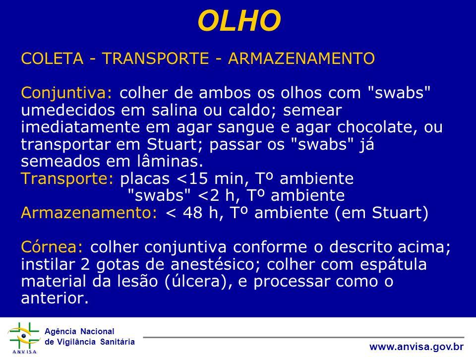 Agência Nacional de Vigilância Sanitária www.anvisa.gov.br COLETA - TRANSPORTE - ARMAZENAMENTO Conjuntiva: colher de ambos os olhos com