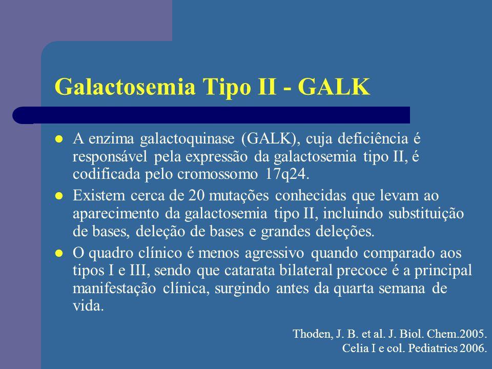 Galactosemia Tipo II - GALK A enzima galactoquinase (GALK), cuja deficiência é responsável pela expressão da galactosemia tipo II, é codificada pelo c