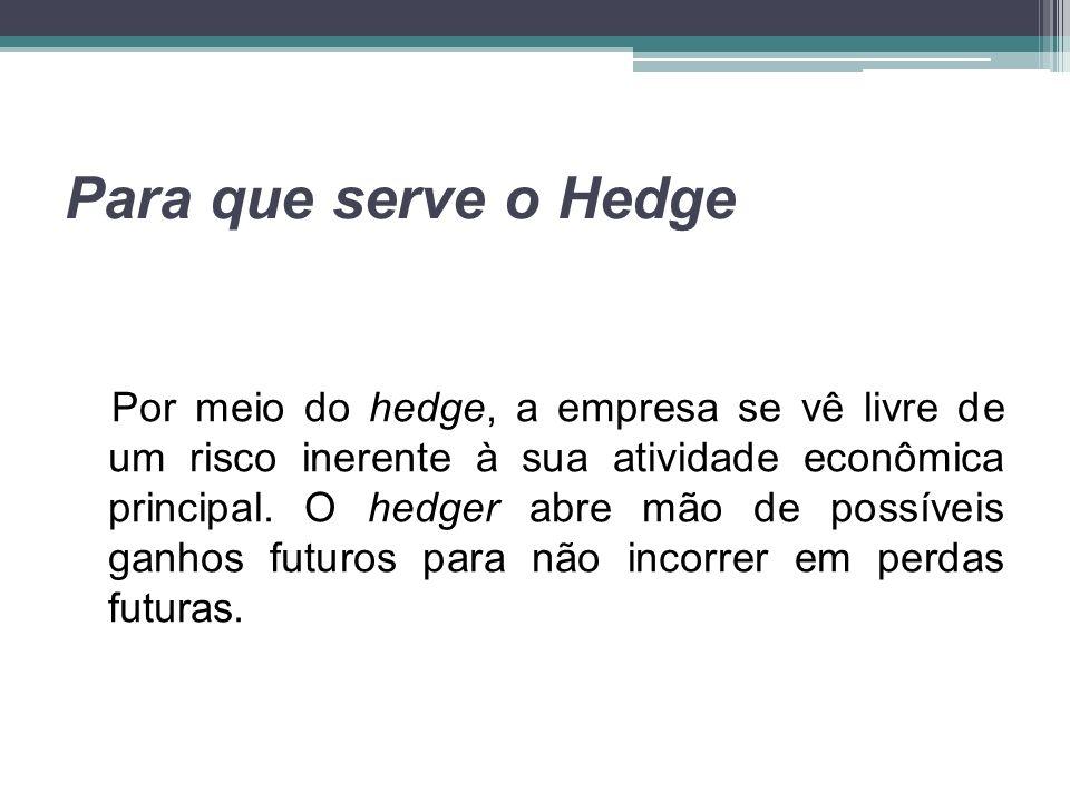 Para que serve o Hedge Por meio do hedge, a empresa se vê livre de um risco inerente à sua atividade econômica principal. O hedger abre mão de possíve