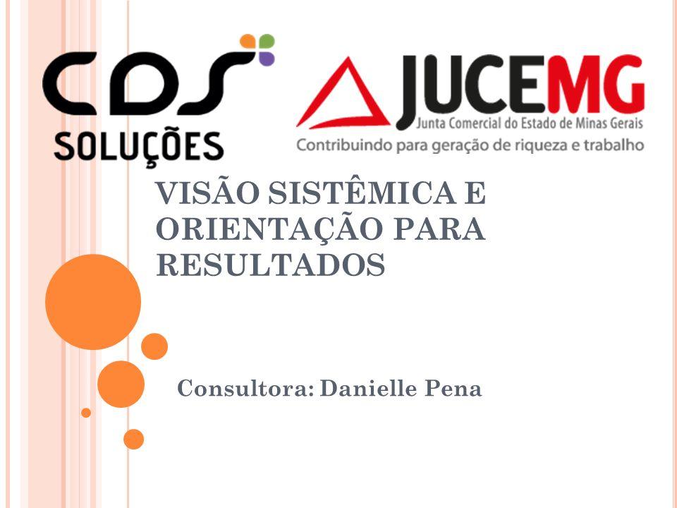 VISÃO SISTÊMICA E ORIENTAÇÃO PARA RESULTADOS Consultora: Danielle Pena