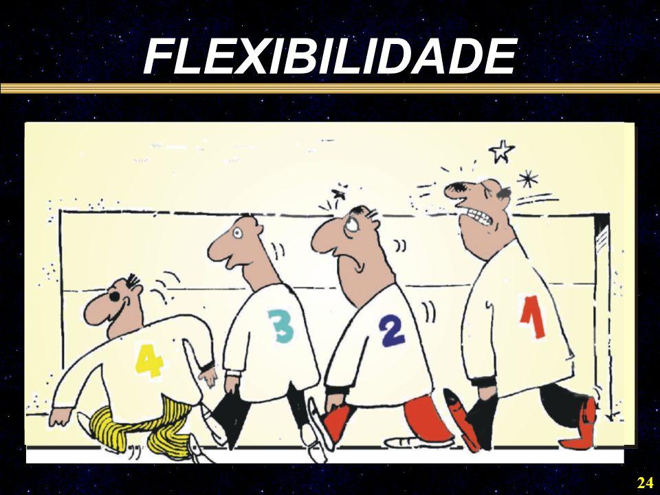 24 FLEXIBILIDADE