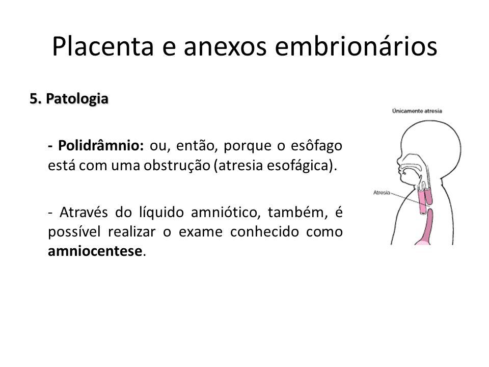 5. Patologia - Polidrâmnio: ou, então, porque o esôfago está com uma obstrução (atresia esofágica). - Através do líquido amniótico, também, é possível