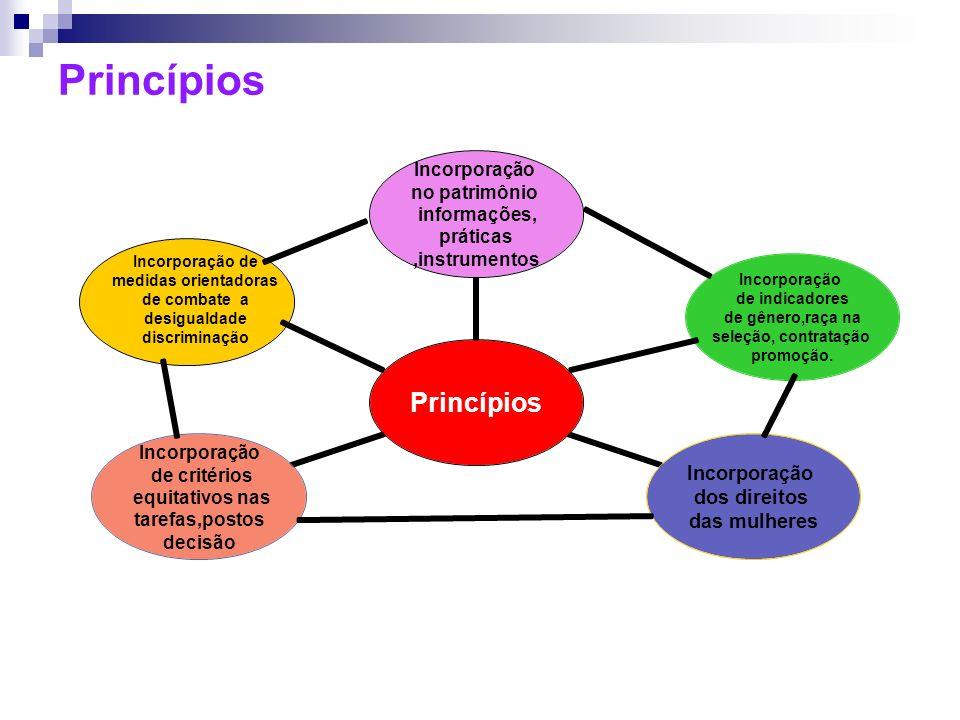 Princípios Incorporação de indicadores de gênero,raça na seleção, contratação promoção. Incorporação de medidas orientadoras de combate a desigualdade