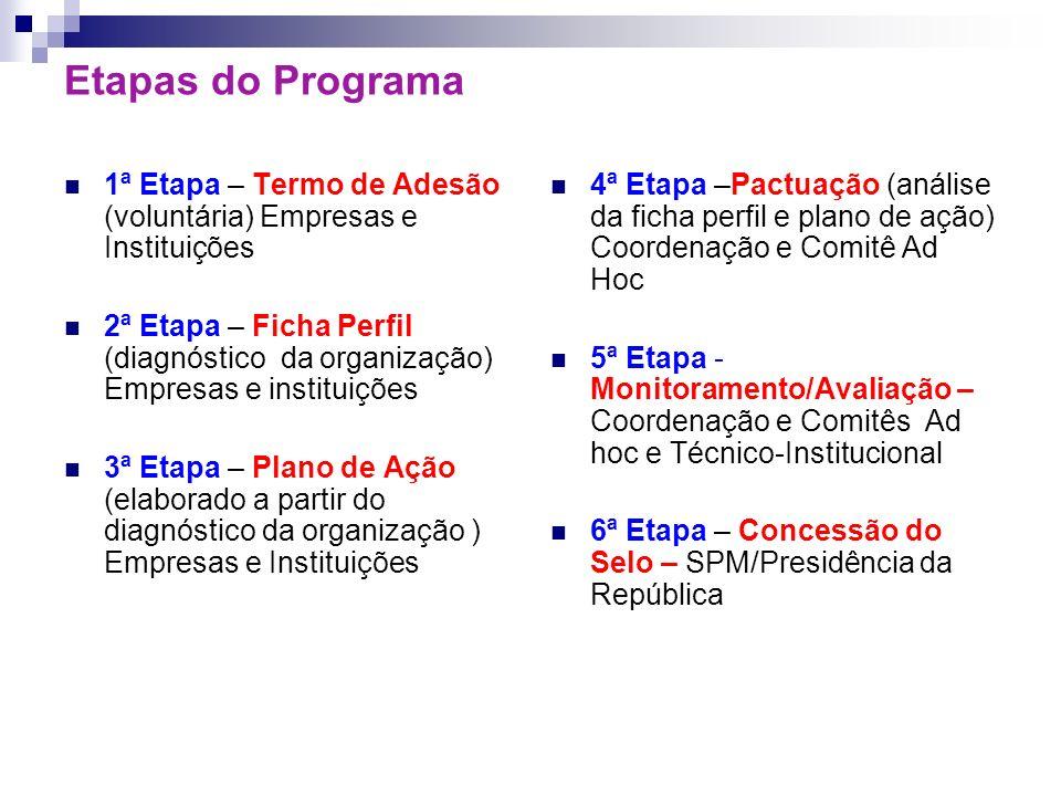 Etapas do Programa 1ª Etapa – Termo de Adesão (voluntária) Empresas e Instituições 2ª Etapa – Ficha Perfil (diagnóstico da organização) Empresas e ins