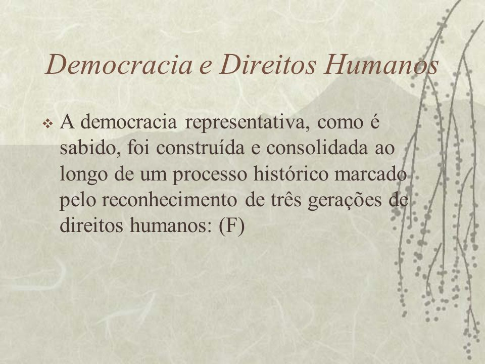 Democracia e Direitos Humanos A democracia representativa, como é sabido, foi construída e consolidada ao longo de um processo histórico marcado pelo