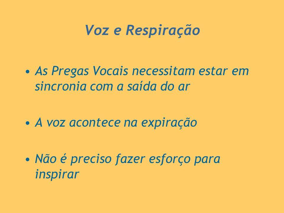 Voz e Respiração As Pregas Vocais necessitam estar em sincronia com a saída do ar A voz acontece na expiração Não é preciso fazer esforço para inspira